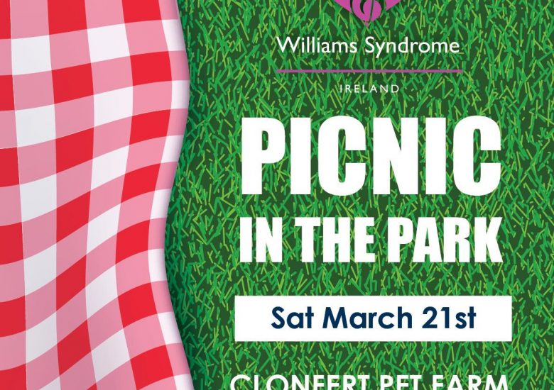 Picnic in the Park 2020 poster